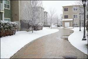 Winter_Landscaping Tips-winter_landscaping tips