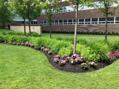 Landscape Maintenance Nassau County