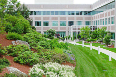 Commercial Landscaping Design Queens
