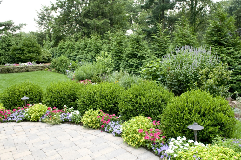 retail property landscaping Queens NY