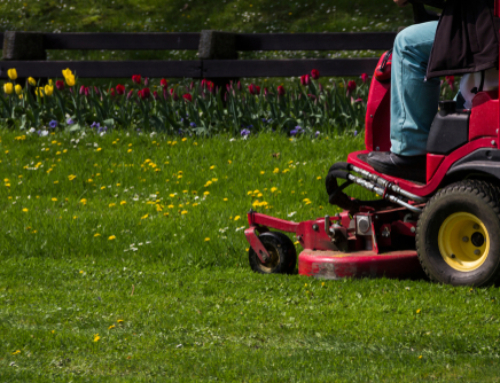 Do You Need to Replace Your Commercial Landscape Maintenance Provider?