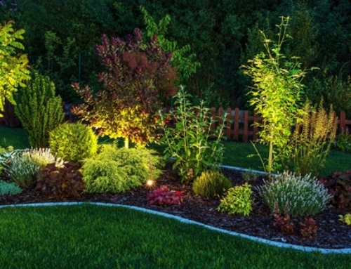 Using Professional Landscape Lighting to Accentuate Your Home