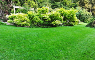 landscape design irrigation system Cerullo Landscape Long Island