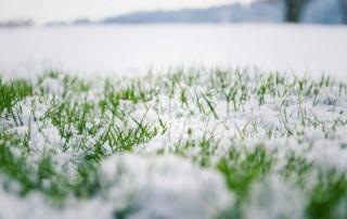 mowing the lawn landscape maintenance in the winter season
