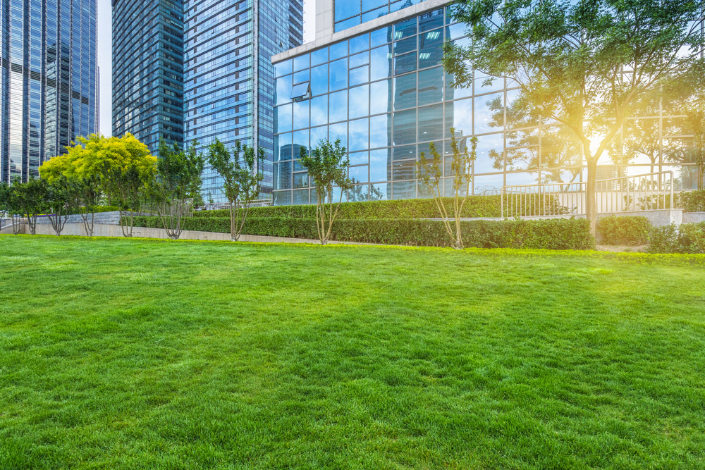 professional commercial landscaping contractor nyc