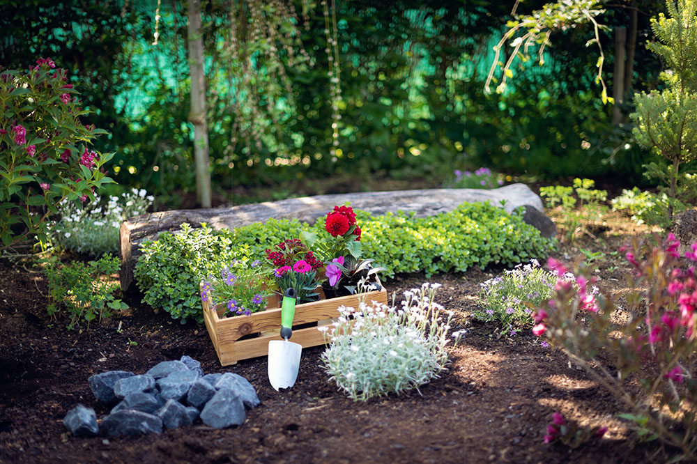 spring-landscaping-planning-commercial-residential-landscaping-design-nassau-county