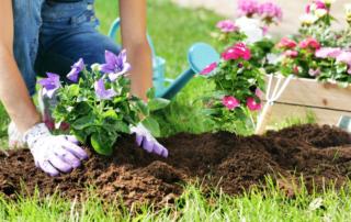 spring-summer-gardening-tips-residential-landscaping-tips-nassau-county-long-island